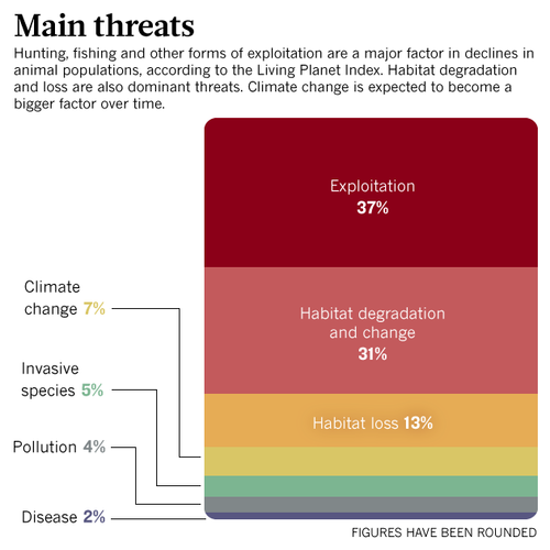 Are we heading towards a mass extinction event?