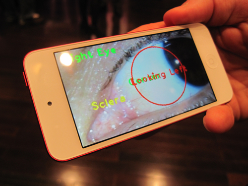 The Eyeball Selfie For Secure Banking, EyeVerify Gets $6 Million