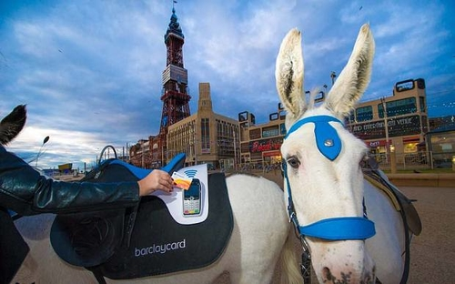 Cash is a pain in the ass: Blackpool donkey goes contactless