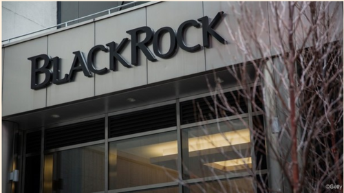 BlackRock carves niche in UK mortgages