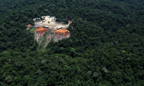 Tracking deforestation