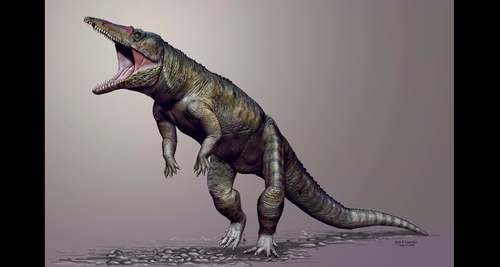 Giant bipedal crocodile ruled ancient food chain