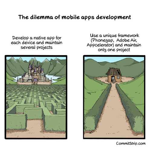 Decisions of a mobile developer