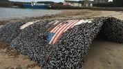 Falcon 9 debris washes up in the Scillies