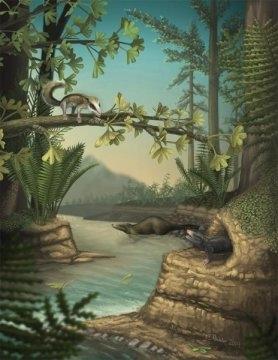 Jurassic Mammals