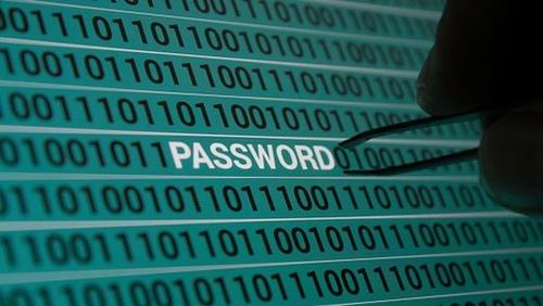 Do meerkats understand cyber-security?