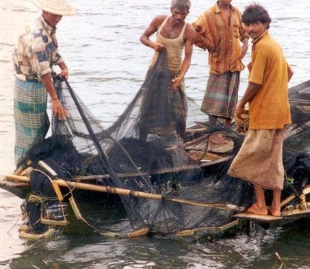 Is There Such a Thing As Sustainable Fishing?