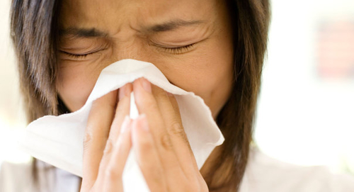 Flu Poses Far Greater Risk Than Ebola to U.S. Economy
