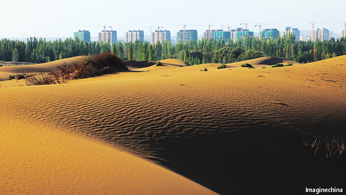 Planting 100 billion trees: China's Great Green Wall against desertification