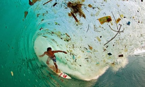 Provocative photos to catalyse environmental action