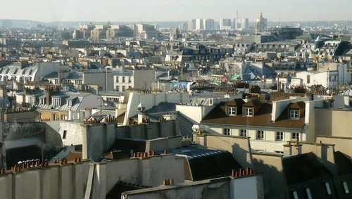 France mandates that all new rooves must be covered in plants or solar panels