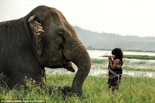 Vietnamese Girl with her Elephant.