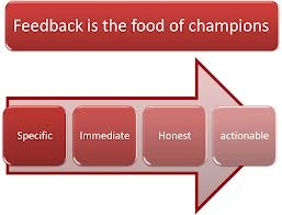 Feedback is the food of champions