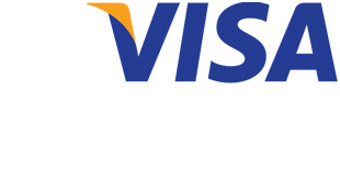 Visa Inc frets over $10 billion price tag on European brand