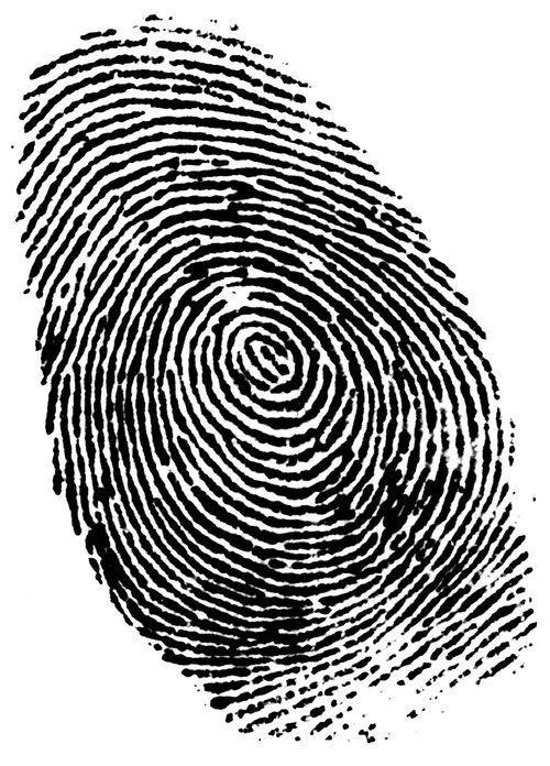 German minister photo fingerprint 'theft' seemed far too EASY, wail securobods