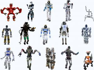 DARPA Robotics Challenge Finals: Know Your Robots