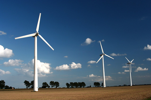How owls could help make wind turbines quieter