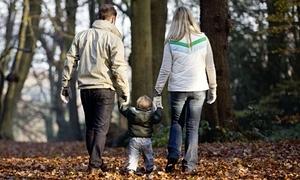 Flagship adoption policy under stress!