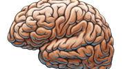 Brain Injury- BE AWARE