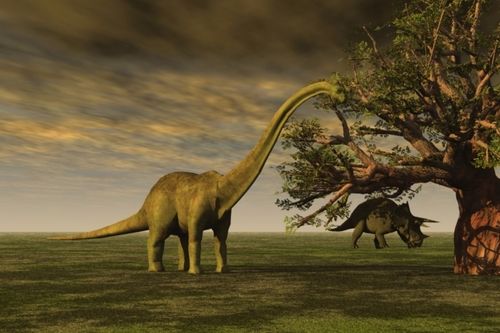 Bye Bye Triceratops: The end of the insurance dinosaurs