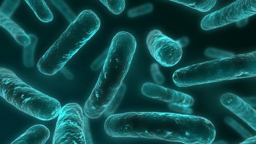 Winter health warning for sepsis
