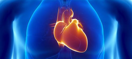 Delays in Diagnosing Heart Attacks