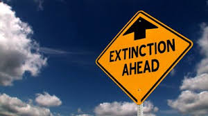 Is the 9-to-5 day becoming extinct?