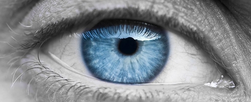 Could we be close to curing blindness?
