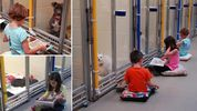It's a 'hard back' life for well-read rescue dog