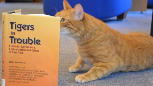 Cats address serious issue in Education