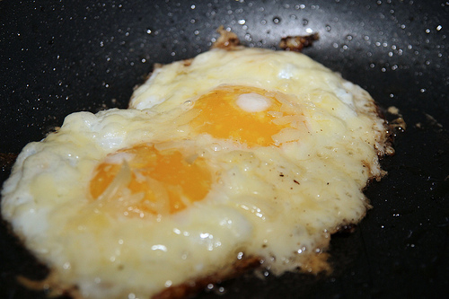 Does your hosting company provide Fried Eggs?