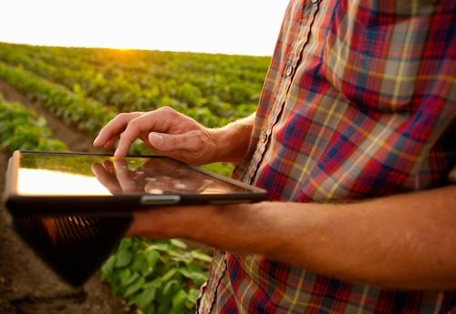 Harvesting the Agricultural Digital Dividend