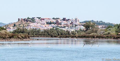 Achieve The Perfect Work-Life Balance In Portugal