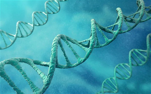 Will DNA ever be a viable medium for storing digital data?