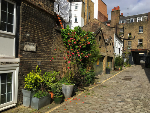 London's hottest properties - converted mews houses