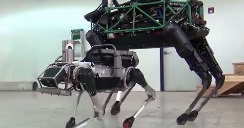 A Robot's Best Friend?