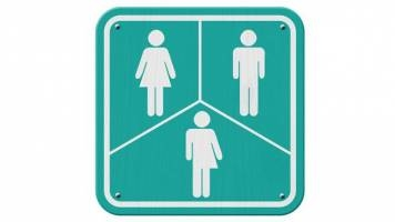 Transgender discrimination - the final frontier?