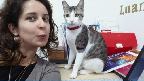 Meet Seedy, the purr-fect colleague