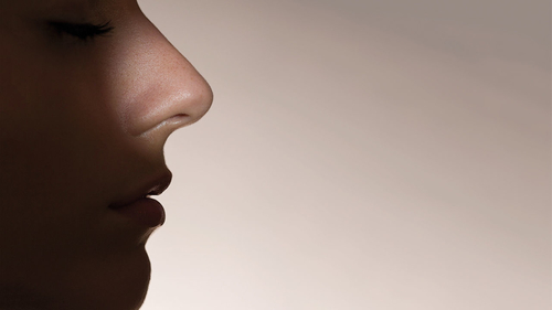 Artificial intelligence grows a nose