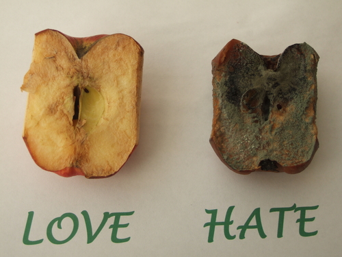 Can you rot an apple with the power of your mind?