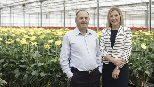 Family Businesses set to grow