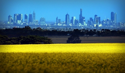 Urban sprawl eroding Melbourne's food-bowl