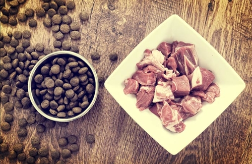 Exposing pet food protein myths