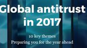 Global antitrust investigations - mitigating risk