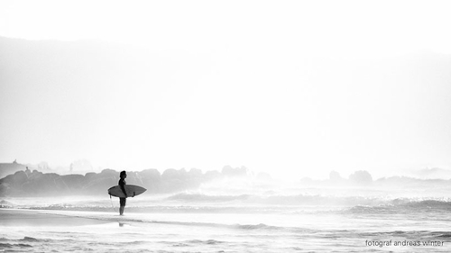 UX is changing your business? YES! , you can´t stop the waves but you can learn to surf