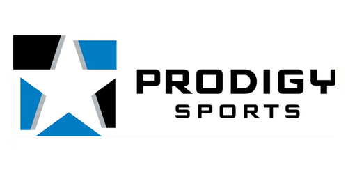 Prodigy Sports Announces Practice Dedicated To eSports Executive Placement