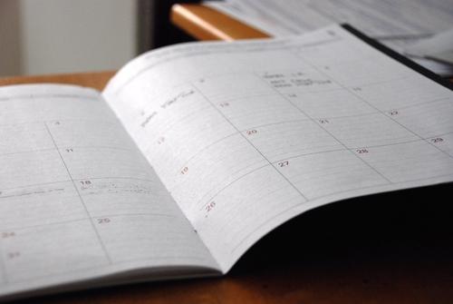Adoption d'un plan de travail annuel