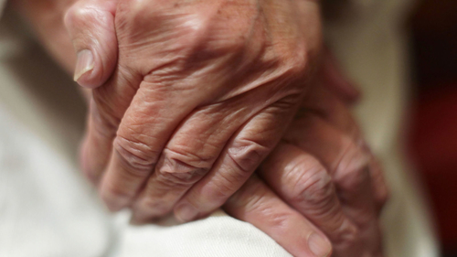 Adult social care at risk of total collapse