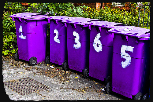Bin collections cut to fund social care