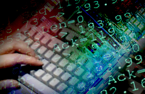 Hacking increase sparks more cyber security programs